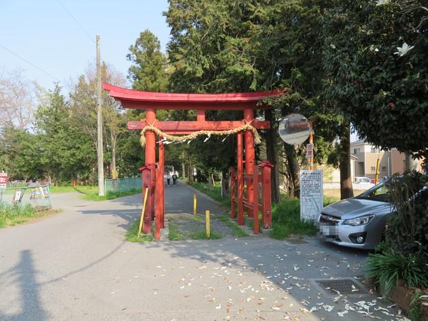 中山神社(見沼区)一の鳥居