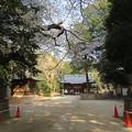 写真: 18.03.28.中山神社(見沼区)