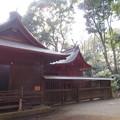写真: 氷川女体神社(見沼区)