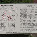 写真: 見沼氷川公園(見沼区)御船祭 竜神伝説