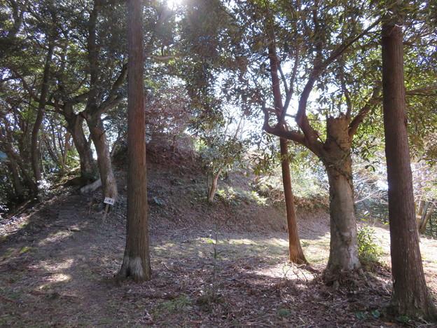 滝田城(南房総市)八幡台(櫓台)