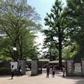 新宿御苑(新宿区)新宿門