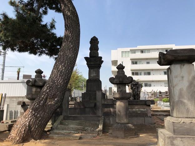 曹渓寺(南麻布)真田信之供養塔