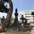 写真: 曹渓寺(南麻布)真田信之供養塔
