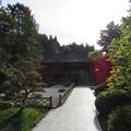 写真: 櫻池院(高野町)