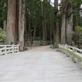 Photos: 高野山金剛峯寺 奥の院(高野町)一の橋