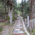 Photos: 高野山金剛峯寺 奥の院(高野町)吉川家墓所参道?