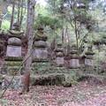 Photos: 高野山金剛峯寺 奥の院(高野町)彦根井伊家墓所