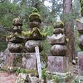 Photos: 高野山金剛峯寺 奥の院(高野町)柴田勝家墓所