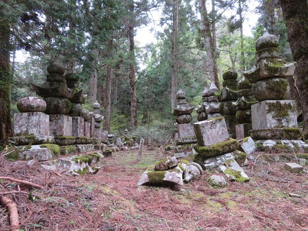 高野山金剛峯寺 奥の院(高野町)佐伯藩毛利家墓所