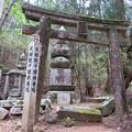 写真: 高野山金剛峯寺 奥の院(高野町)天授院千姫墓所