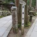 写真: 高野山金剛峯寺 奥の院(高野町)其角句碑
