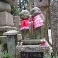 Photos: 高野山金剛峯寺 奥の院(高野町)なかよし地蔵尊