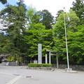 Photos: 椿大神社(鈴鹿市)