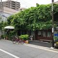 写真: ル・クシネ(根津)