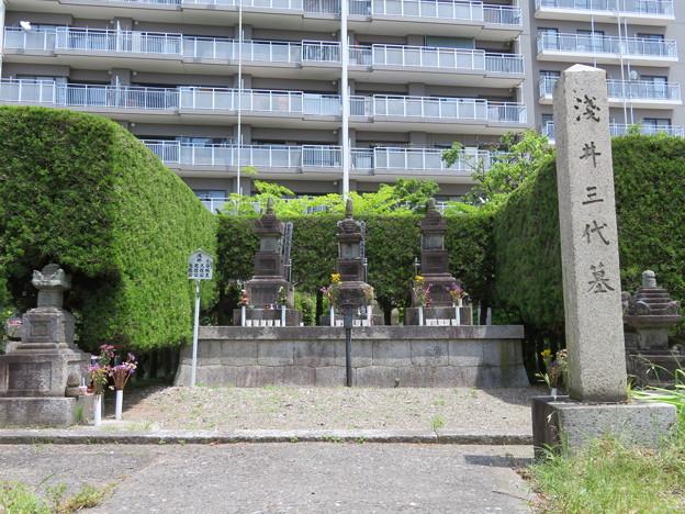 徳勝寺(長浜市)浅井三代墓