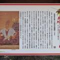 姉川古戦場(長浜市)朝倉景健本陣/三田村氏館
