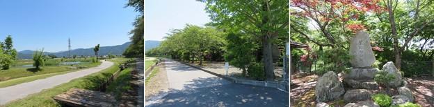 姉川古戦場(長浜市)血原