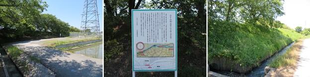 姉川古戦場(長浜市)かすみ堤