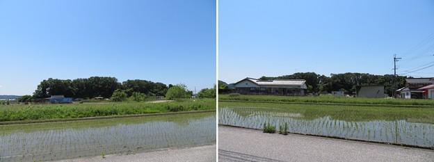 姉川古戦場(長浜市)勝山北東・北
