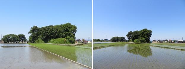 姉川古戦場(長浜市)勝山東