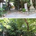 大垣城(岐阜県大垣市)二の丸跡/濃飛護国神社