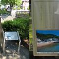 写真: 住吉公園(大垣市)芭蕉句碑