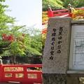 写真: 住吉公園(大垣市)住吉燈台