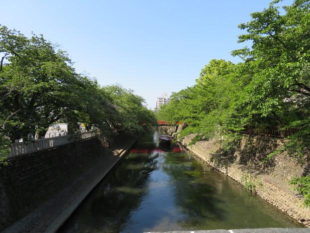 水門川(大垣市)高橋より