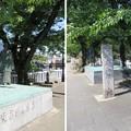 写真: 住吉公園(大垣市)奥の細道むすびの地