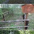 お茶屋屋敷跡(大垣市)井戸跡