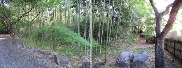 お茶屋屋敷跡(大垣市)土塁