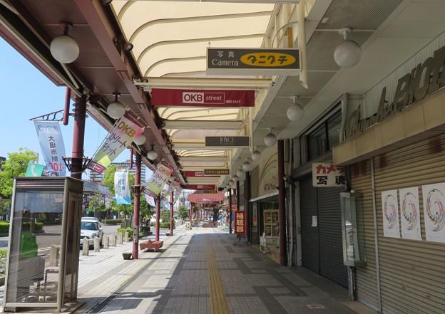大垣公園東門東歩行者信号(大垣市)