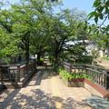 美登鯉橋(大垣市)