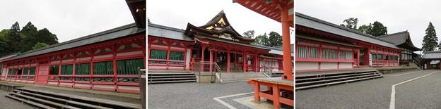 南宮大社(垂井町)拝殿