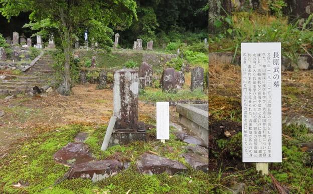 禅幢寺(垂井町)長原武墓