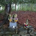 写真: 島津塚(島津豊久墓。大垣市)