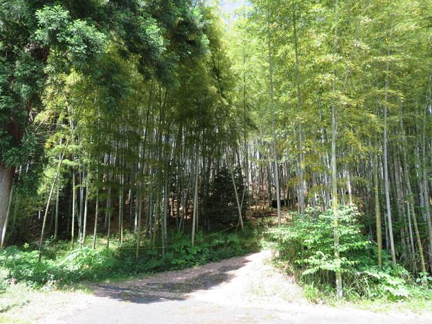関ヶ原合戦 岡山陣跡(関ケ原町)