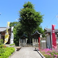 写真: 関ヶ原合戦 西首塚(関ケ原町)