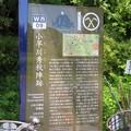 関ヶ原合戦 小早川秀秋陣跡/松尾山城(関ケ原町)松尾口