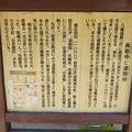 写真: 長敬寺(郡上市)