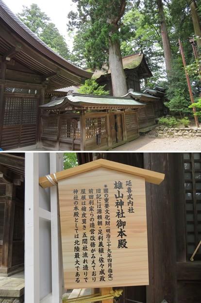 雄山神社 前立社殿(立山町岩峅寺1)本殿