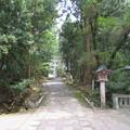 雄山神社 前立社殿(立山町岩峅寺1)東鳥居