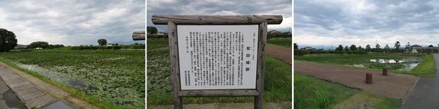 安田城(富山市)