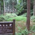 Photos: 増山城(砺波市)馬洗池
