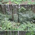 Photos: 増山城(砺波市)K郭