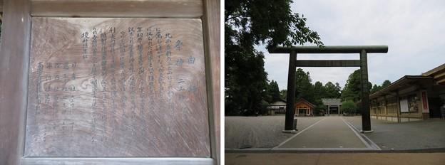 高岡城(高岡市。高岡古城県定公園)本丸/射水神社