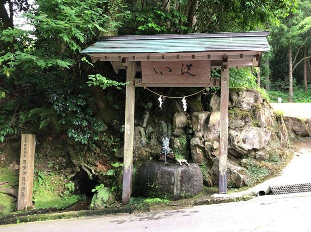気多神社(高岡市伏木一宮)気多神社の清泉
