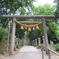 写真: 気多神社(高岡市伏木一宮)