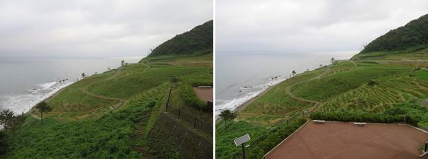白米千枚田(輪島市)